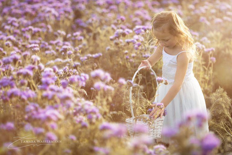 Blumen plücken
